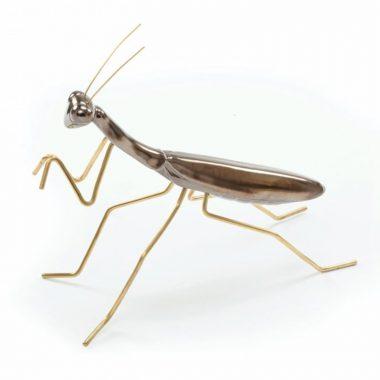 Mantis Oro