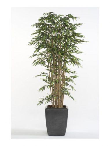 Árbol Bambú estilo Japones de Caña Natural